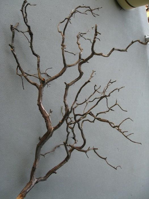 Сухие ветки в декоре интерьера