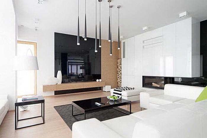 Черно-белый дом_15