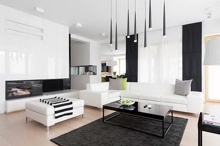 Черно-белый дом_16